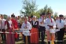 Powiatowe Święto Plonów 2013-31